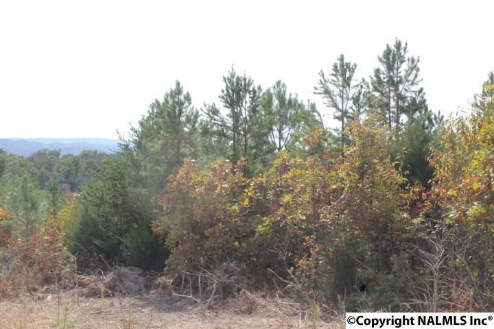 Photo of home for sale at Lot 3 Hillside Drive, Fort Payne AL