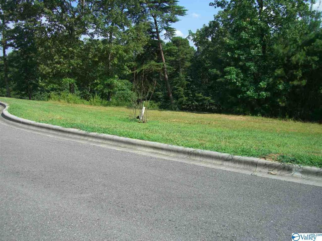 Photo of home for sale at Lot 26 Paradise Place, Scottsboro AL