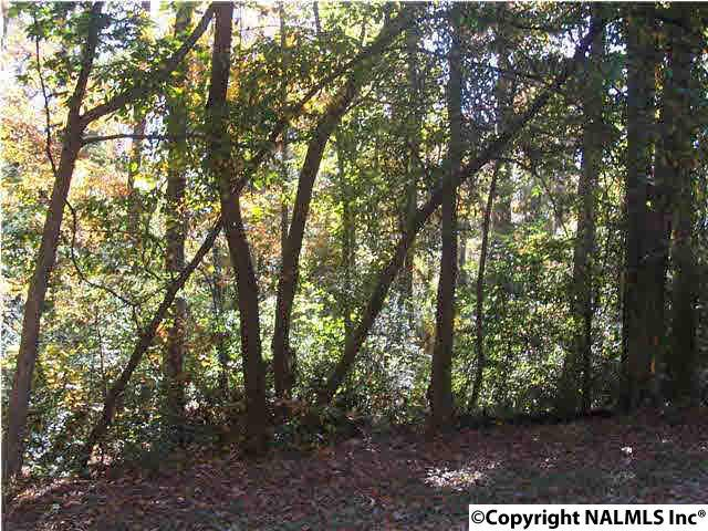 Photo of home for sale at 1.19 AC Foxfire Drive, Arab AL