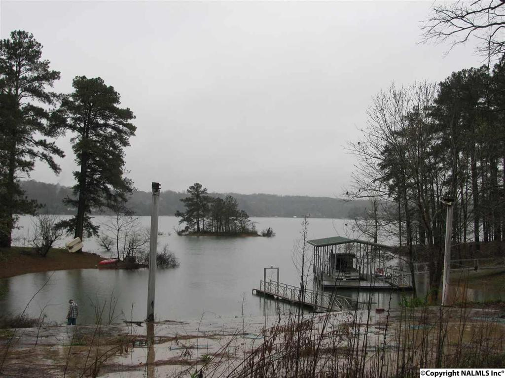Photo of home for sale at County Road 906, Crane Hill AL