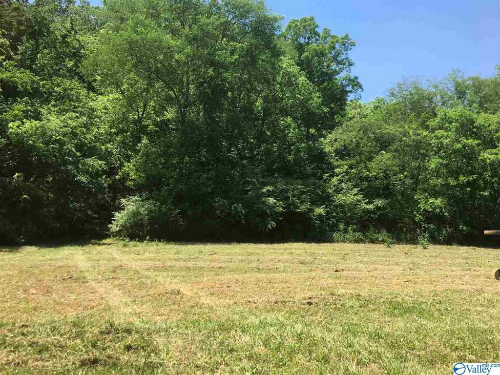 Photo of home for sale at 0 County Road 84, Danville AL