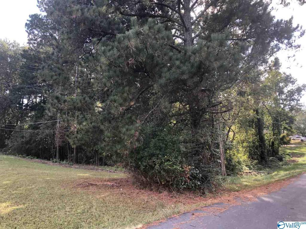 Photo of home for sale at TBD 2nd Avenue, Arab AL