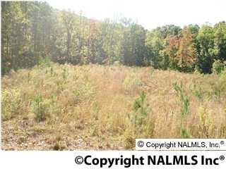 Photo of home for sale at Windy Hill Road, Rainbow City AL