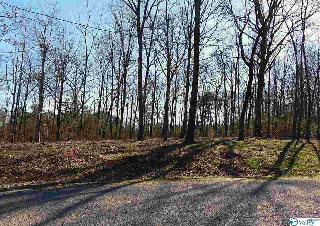 Photo of home for sale at Stoney Mountain Drive, Guntersville AL