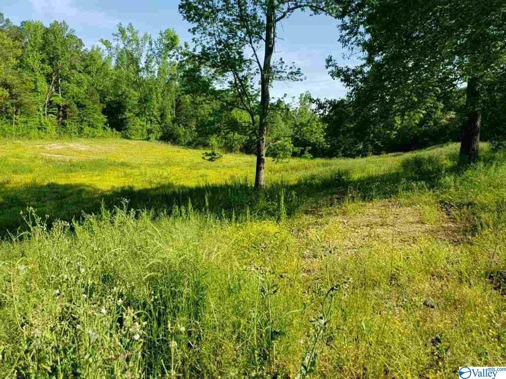 Photo of home for sale at 9270 Barker Road, Athens AL