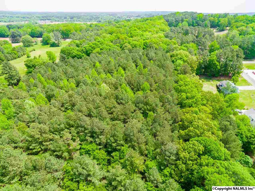 Photo of home for sale at 505 Austinville Flint Road, Decatur AL