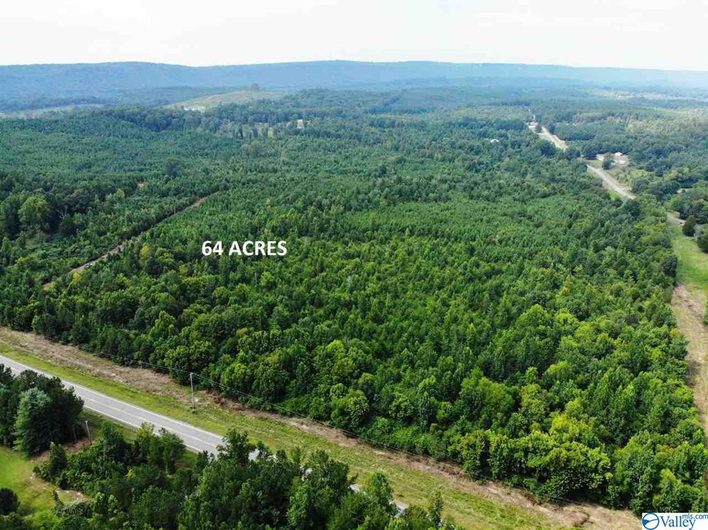 Photo of home for sale at 0 Highway 35, Gaylesville AL
