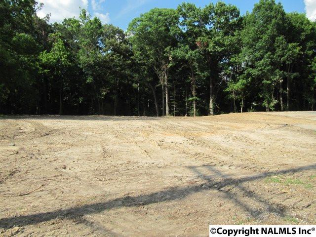 Photo of home for sale at Highway 431, Albertville AL