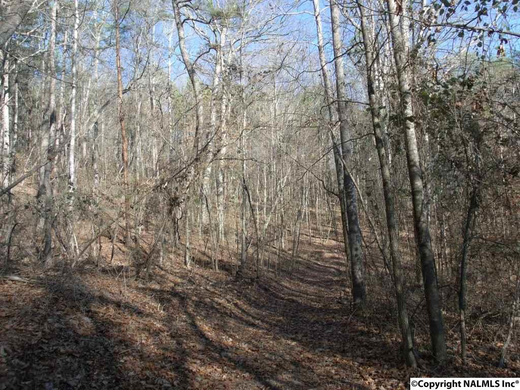 Photo of home for sale at 22AC Pleasant Valley Road, Union Grove AL