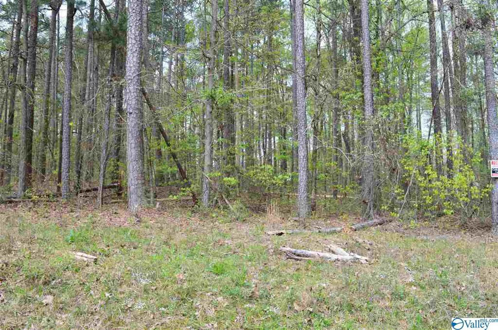 Photo of home for sale at Lot 81 County Road 608, Cedar Bluff AL
