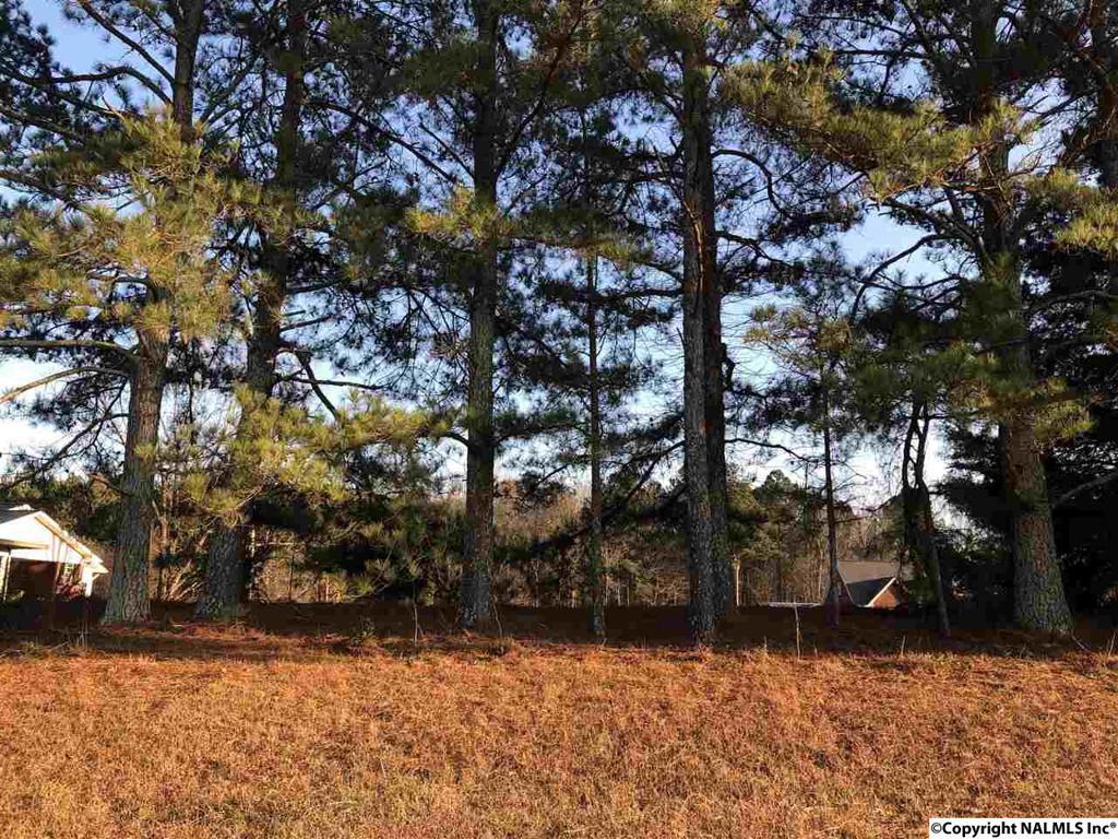 Photo of home for sale at Cedar Bluff Road, Centre AL