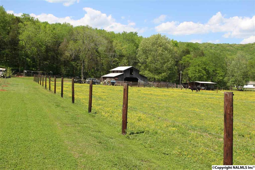 Photo of home for sale at County Road 53, Stevenson AL
