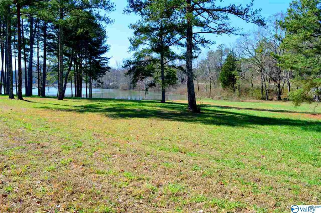 Photo of home for sale at Lot 1 Paradise Ridge Road, Leesburg AL
