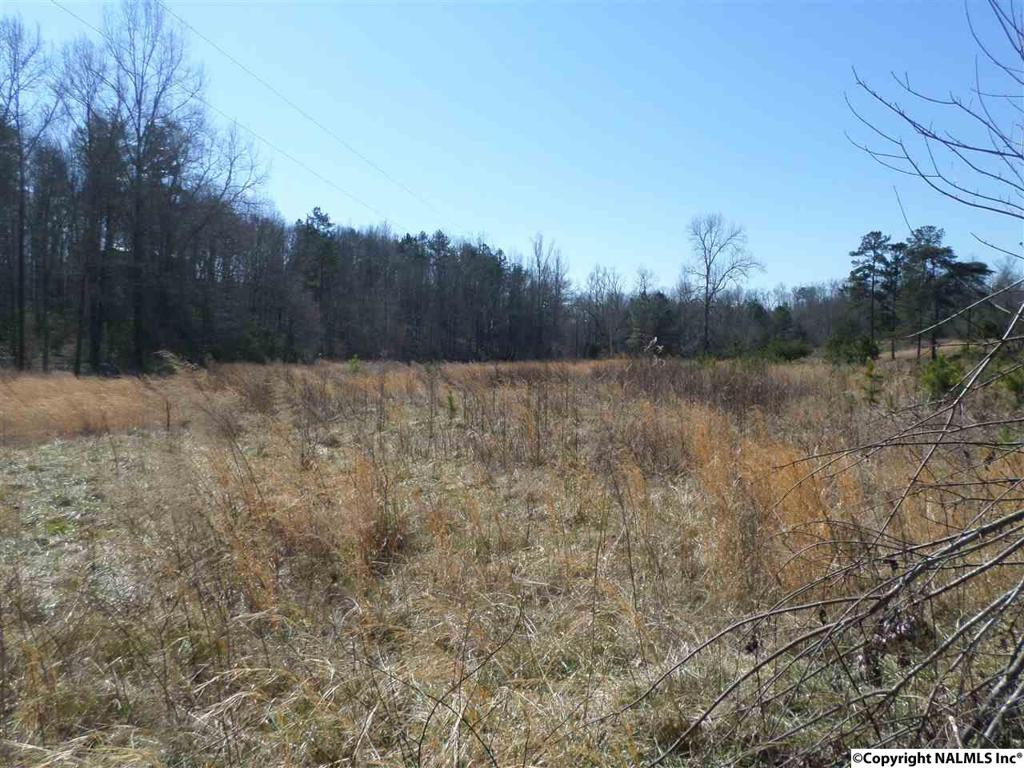 Photo of home for sale at County Road 114, Gaylesville AL