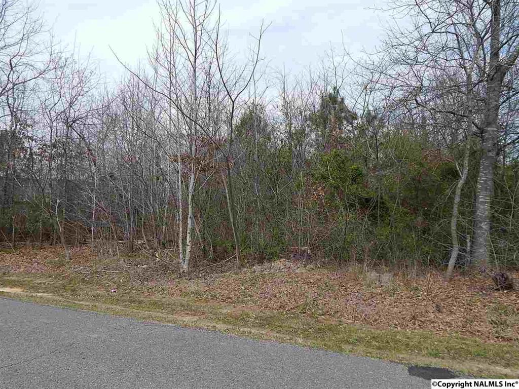 Photo of home for sale at Fossett Road, Guntersville AL