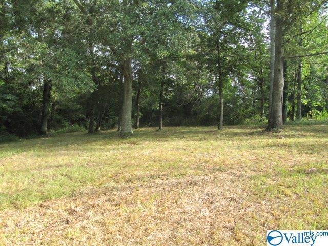 Photo of home for sale at Rice Mill Chavers Road, Albertville AL