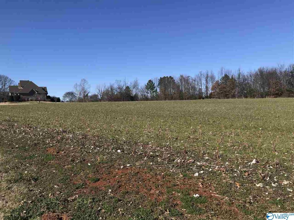 Photo of home for sale at Lot 15 Hatchie Lane, Athens AL