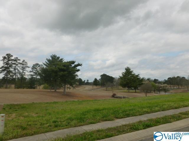 Photo of home for sale at Lot 2 Muirfield Drive, Albertville AL