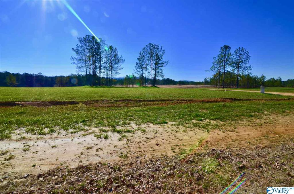 Photo of home for sale at 14 Lakeshore, Gadsden AL