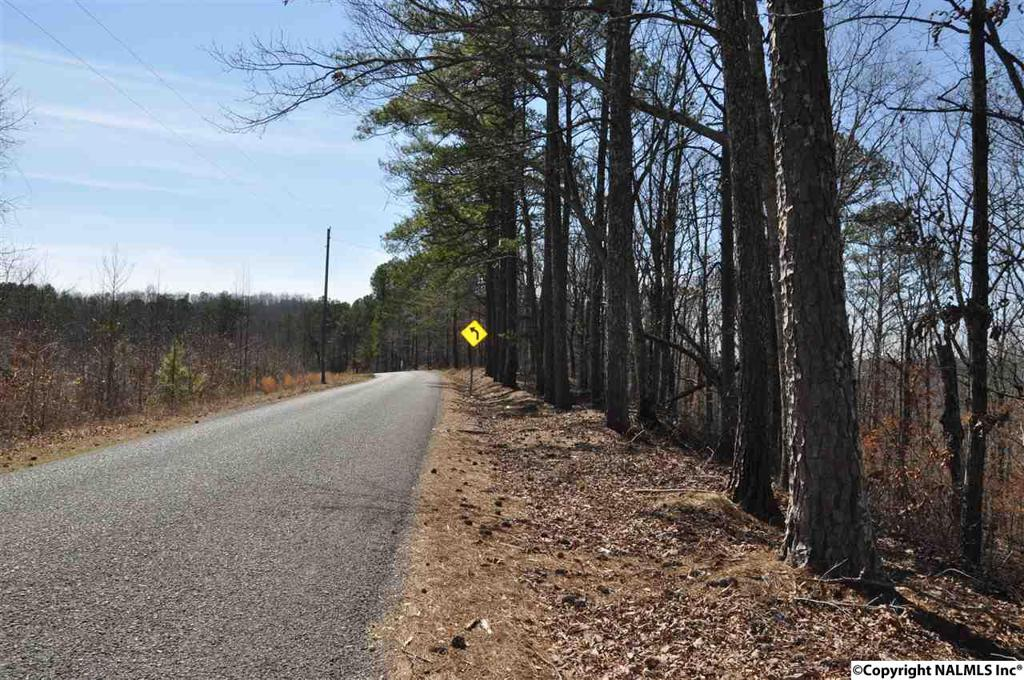 Photo of home for sale at Scenic Highway, Gadsden AL