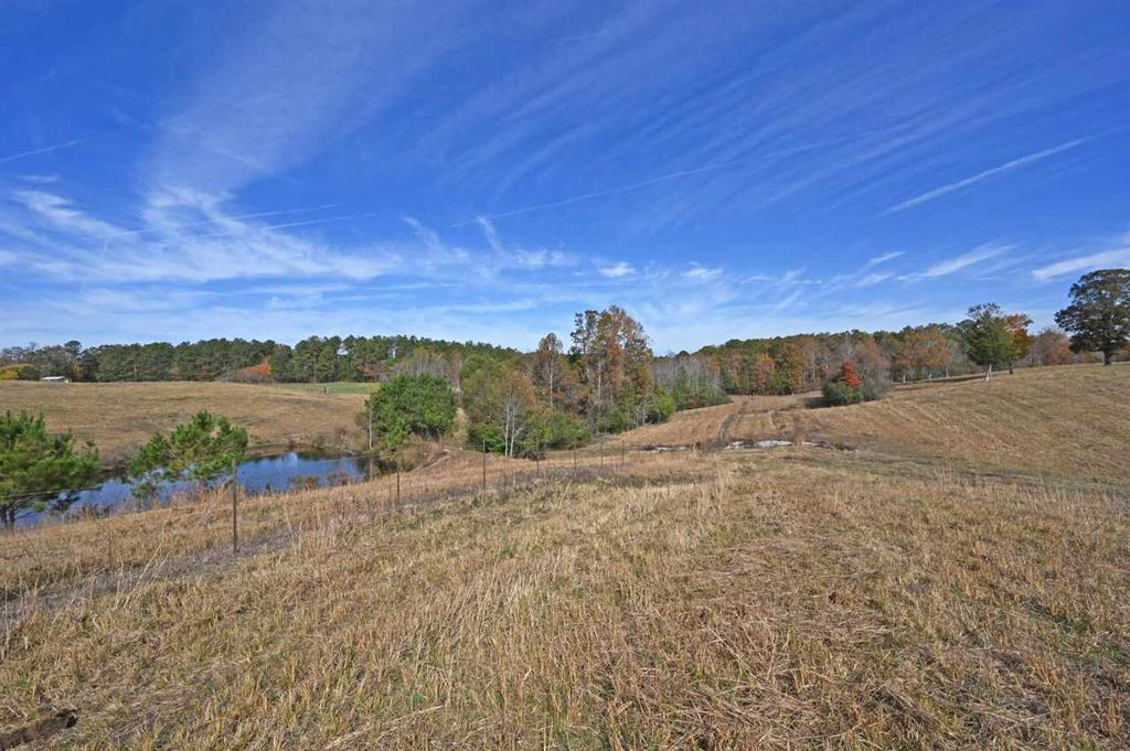 Photo of home for sale at 0 County Road 63, Houston AL