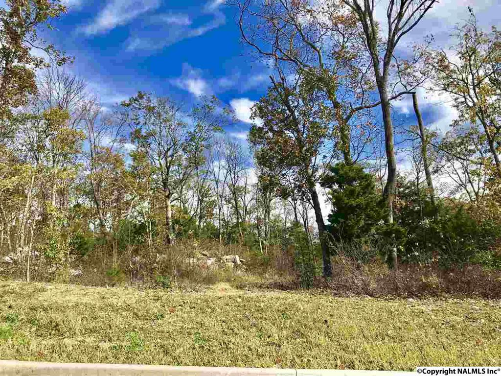 Photo of home for sale at Hawks Way, Huntsville AL
