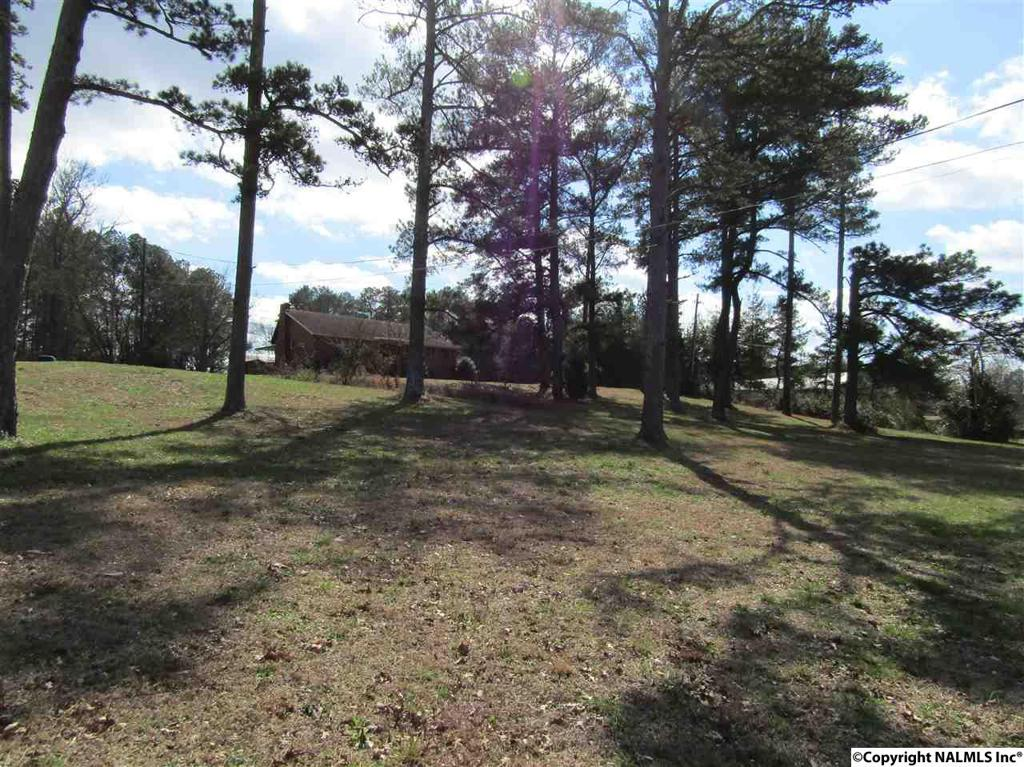 Photo of home for sale at 2722 Rainbow Drive, Rainbow City AL