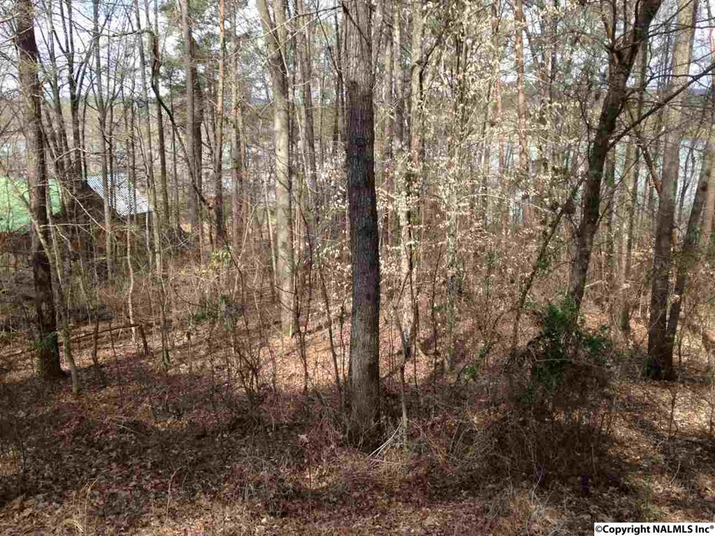 Photo of home for sale at County Road 104, Cedar Bluff AL