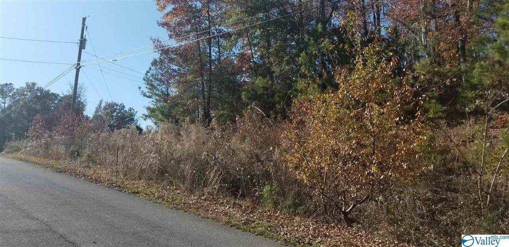 Photo of home for sale at 0 Chula Vista Road, Southside AL