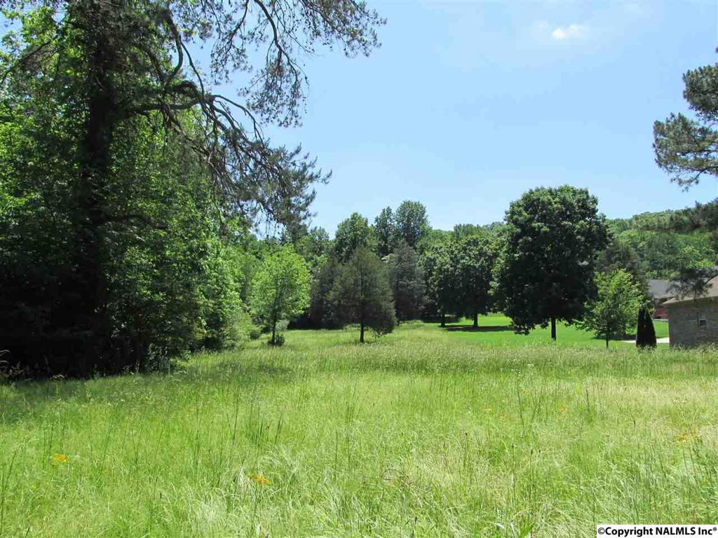 Photo of home for sale at 00 Pulaski Pike, Huntsville AL