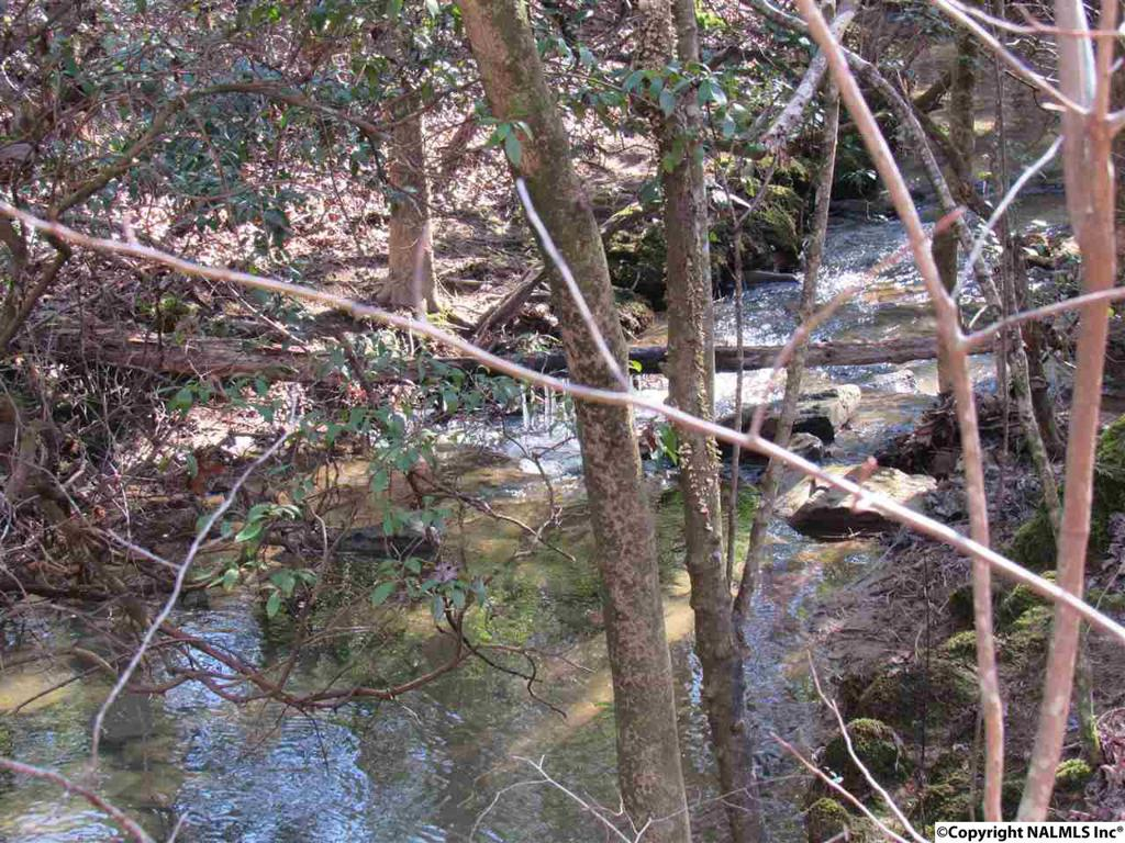 Photo of home for sale at 399 Road 939, Mentone AL