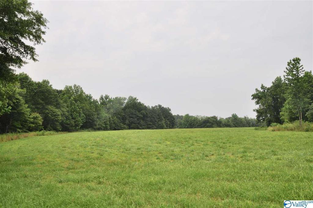 Photo of home for sale at 8723 Alabama Highway 69, Arab AL