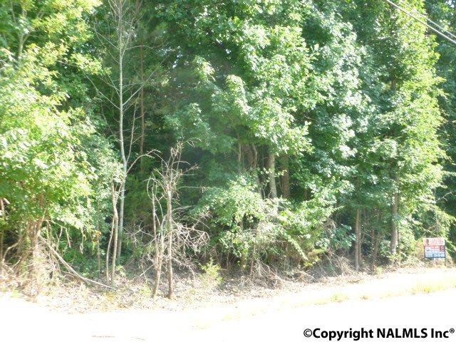 Photo of home for sale at 0 County Road 514, Trinity AL