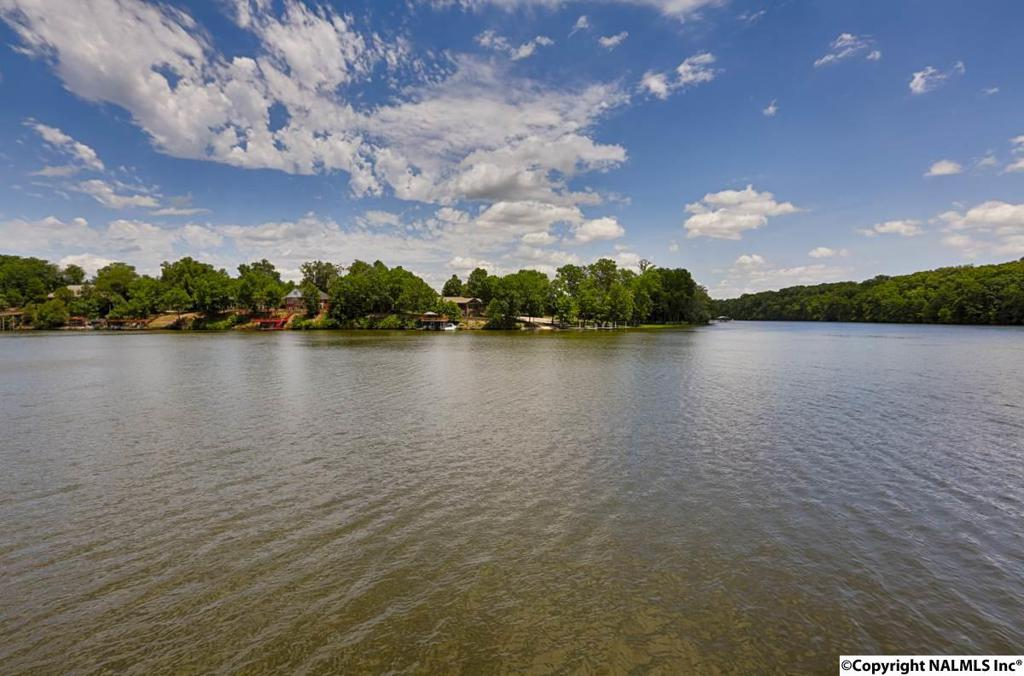 Photo of home for sale at County Road 564, Rogersville AL