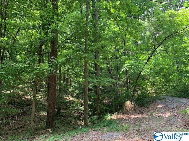 Photo of home for sale at 0 Green Valley Road, Owens Cross Roads AL