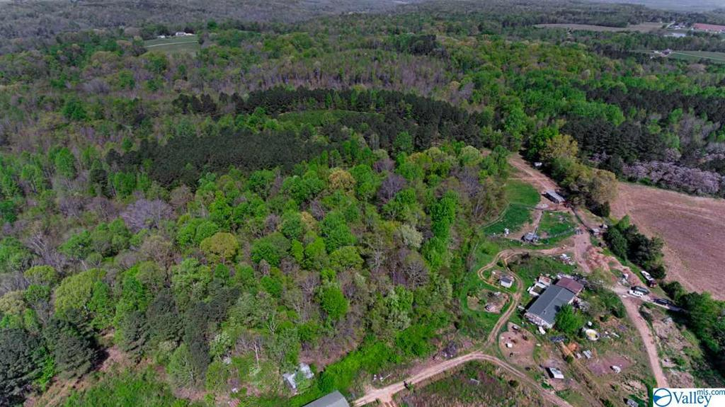 Photo of home for sale at 27591 North Wales Road, Elkmont AL