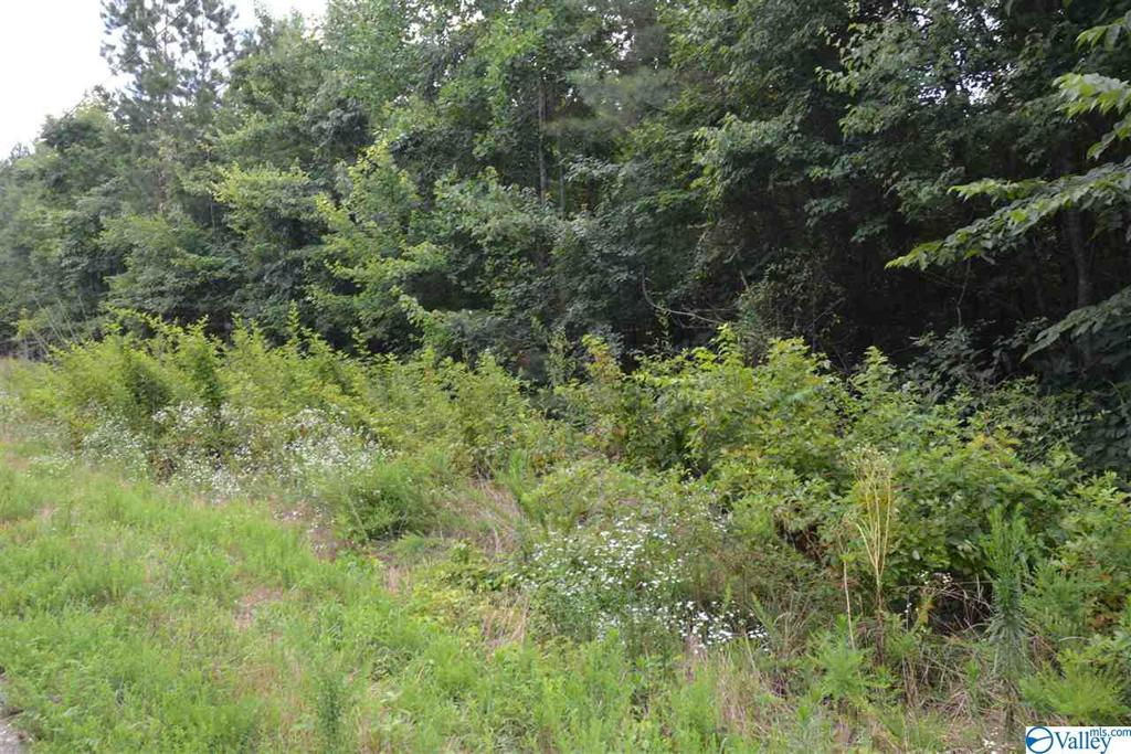 Photo of home for sale at LOT #35 County Road 224, Dutton AL