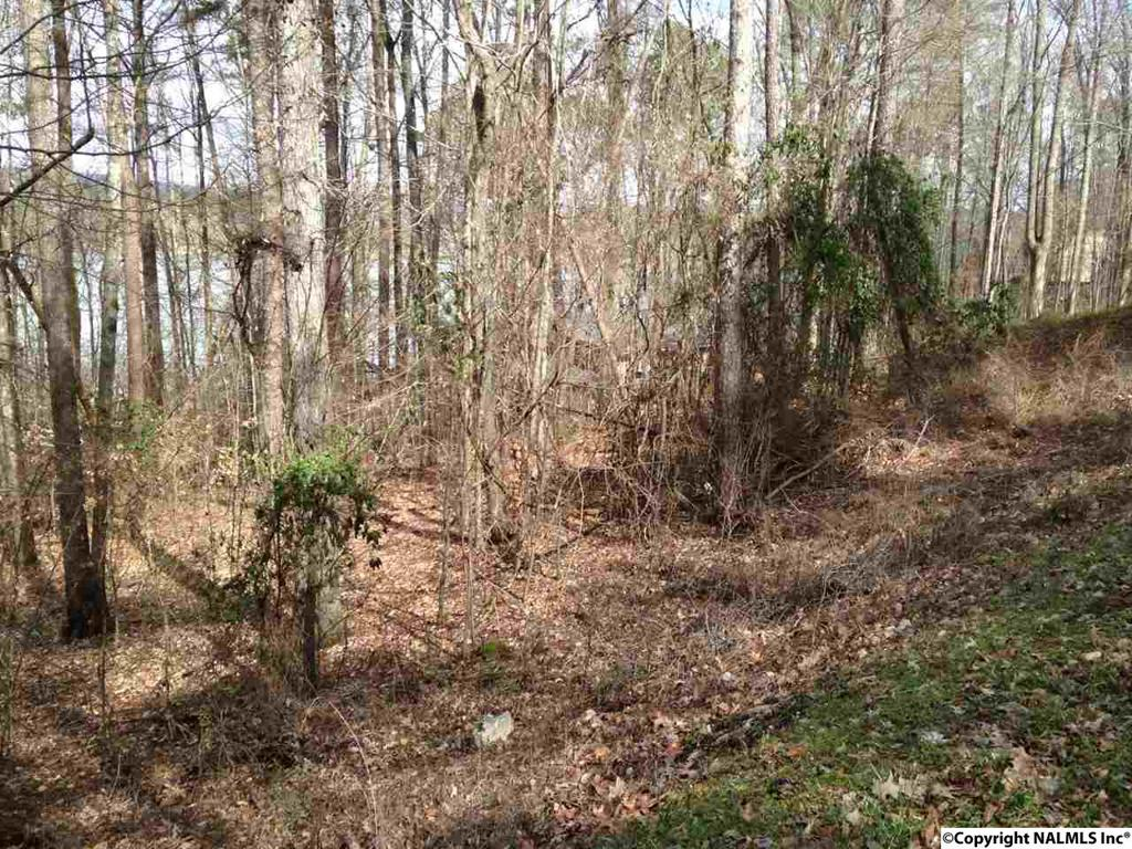 Photo of home for sale at Lot 13 County Road 104, Cedar Bluff AL