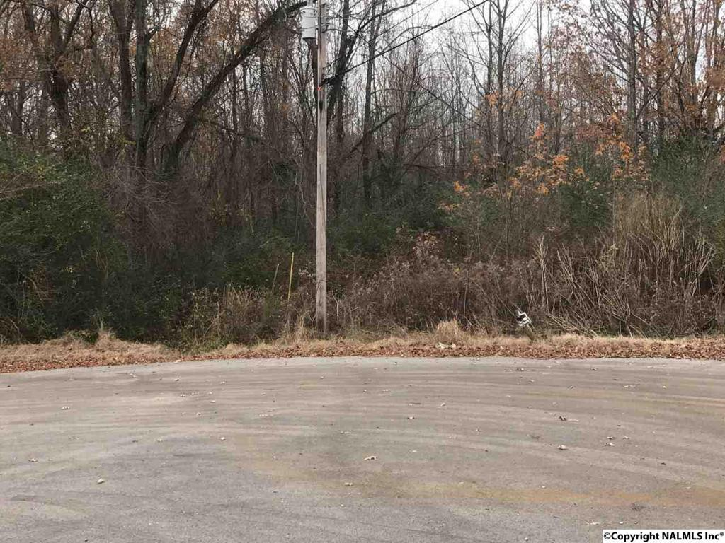 Photo of home for sale at 125 & 126 Razzway Circle, Toney AL