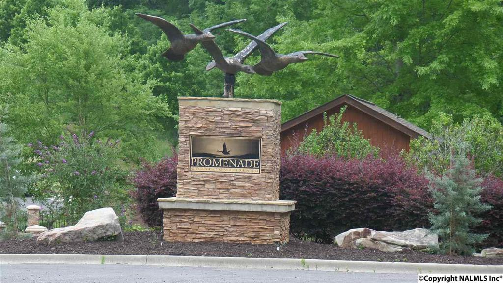 Photo of home for sale at Lookout Mountain Drive, Scottsboro AL