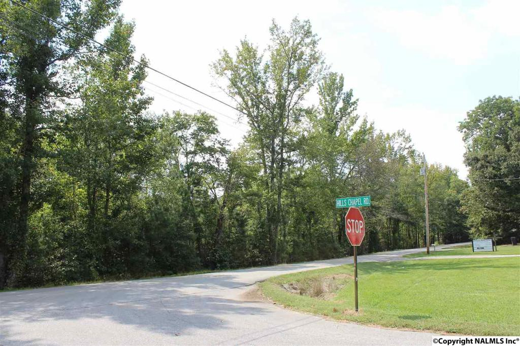 Photo of home for sale at 0 Bobo Section Road, Hazel Green AL