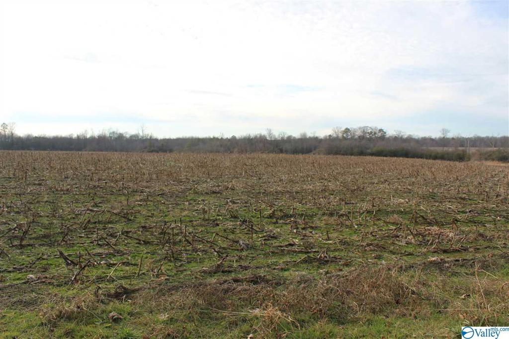 Photo of home for sale at 2365 County Road 19, Dutton AL