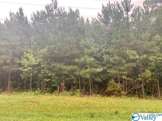 Photo of home for sale at 0 U S Highway 278, Hokes Bluff AL