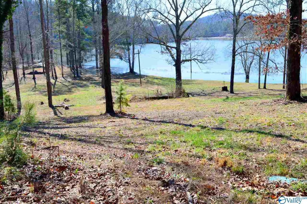 Photo of home for sale at Lot 8 Paradise Ridge Road, Leesburg AL
