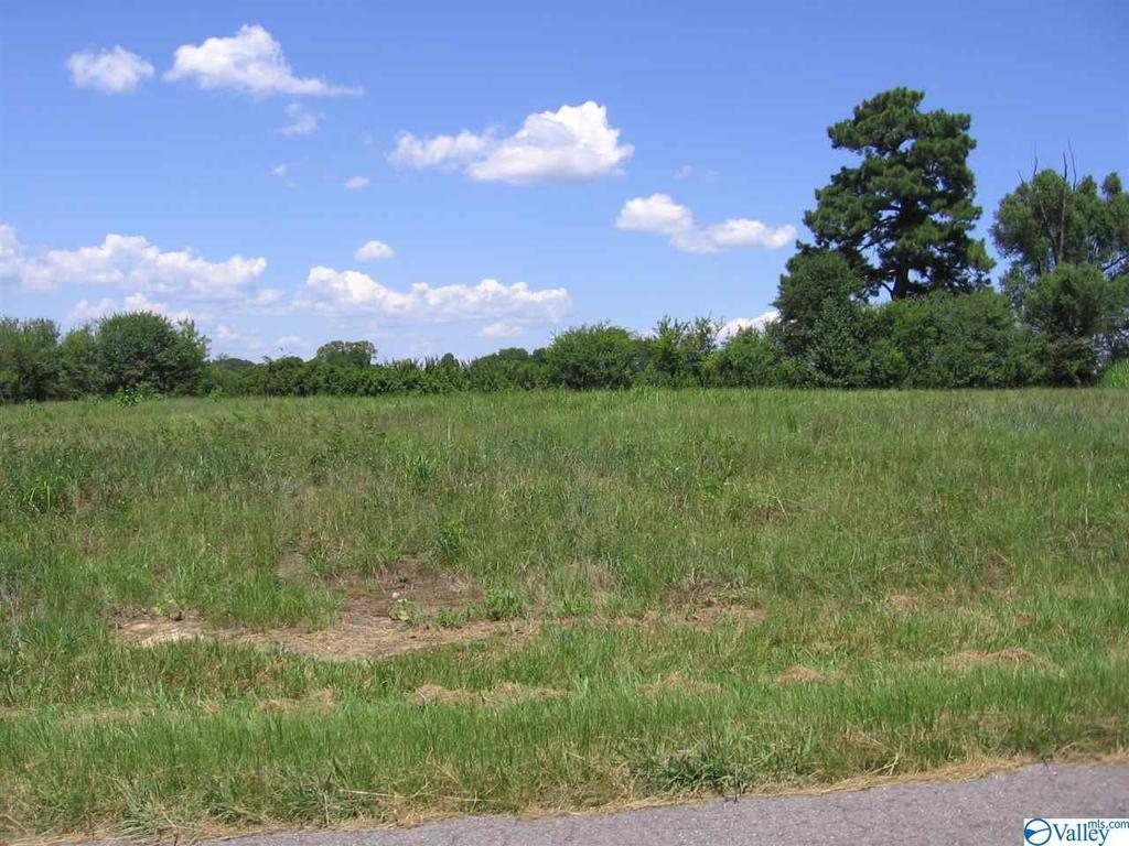 Photo of home for sale at 725 Cochran Avenue, Albertville AL