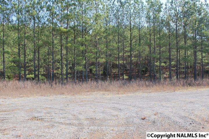 Photo of home for sale at County Road 153, Fort Payne AL