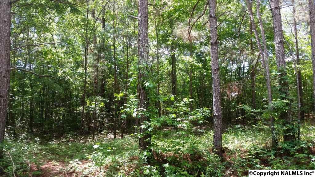 Photo of home for sale at Lot 28 County Road 467, Cedar Bluff AL