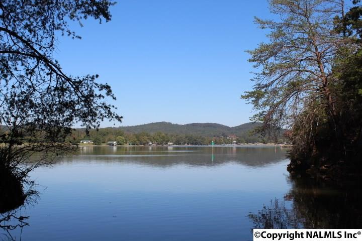 Photo of home for sale at County Road 251, Cedar Bluff AL