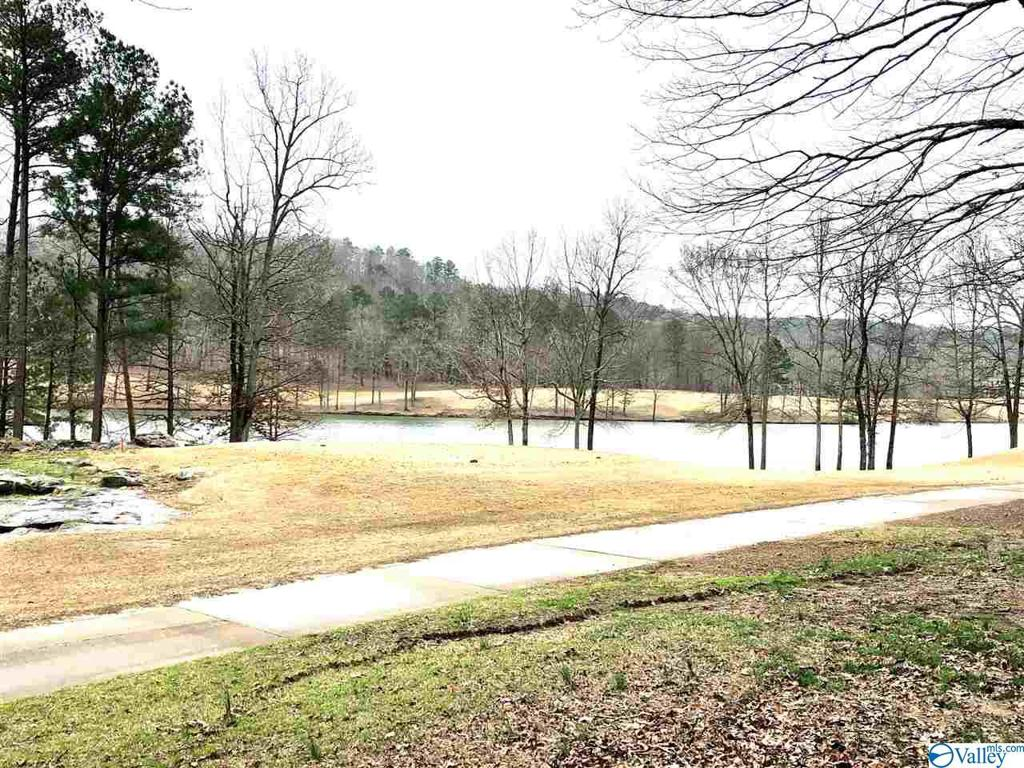 Photo of home for sale at 0 Timberlake Drive, Union Grove AL