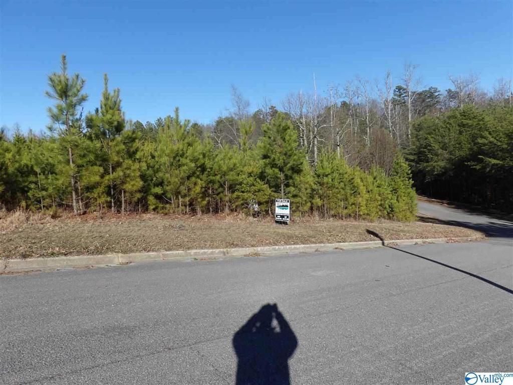 Photo of home for sale at 33 Ridgefield Circle, Guntersville AL